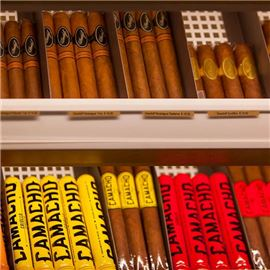 Wide selection of cigars